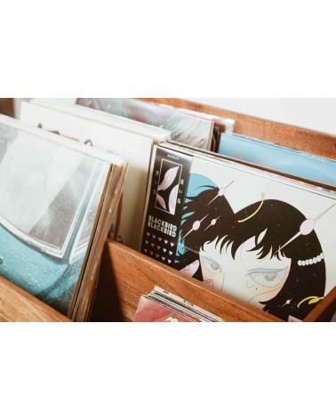 meuble vinyles Kate