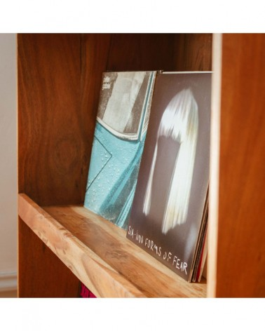 Bibliothèque de vinyles